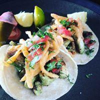 Tempe City Tacos