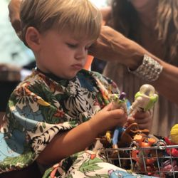 LIONS & TIGERS & HAIR :A specialty children's haircutting shop
