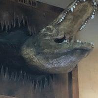 Gator's Dockside Melbourne