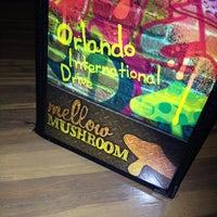 Mellow Mushroom Orlando - International Drive