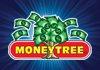 Money Tree Boise
