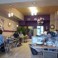 Lilly's Café