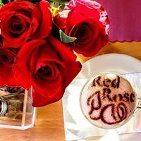 Red Rose Pizzeria