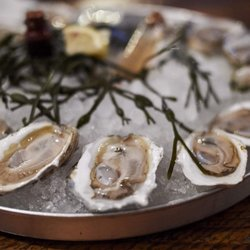 Maine Oyster Company