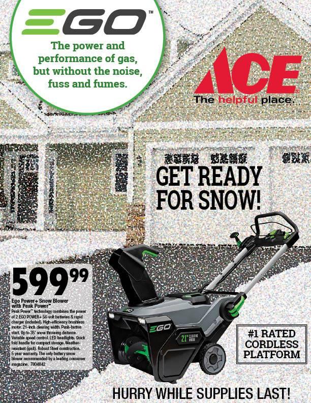 Ace Hardware Ann Arbor