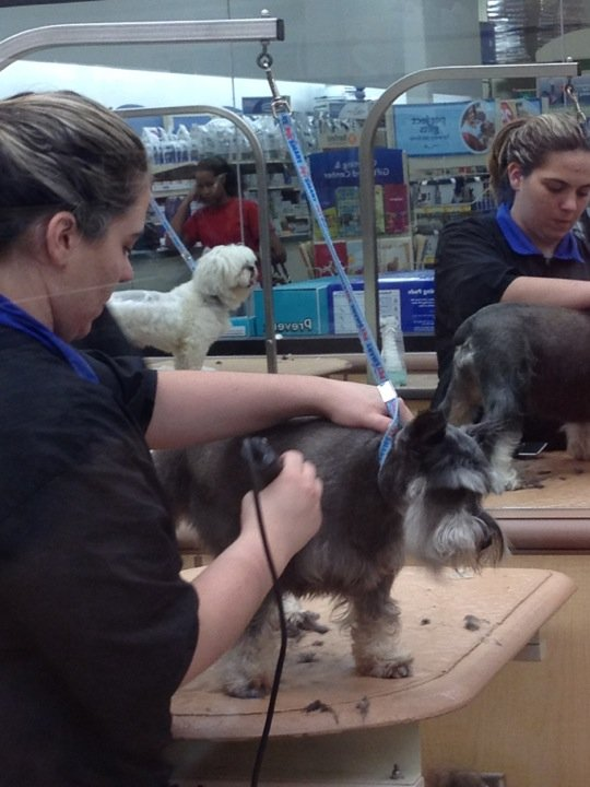 PetSmart Greensboro