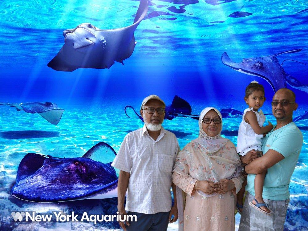 New York Aquarium 602 Surf Ave, Brooklyn