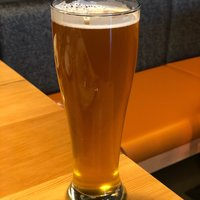 WildFin American Grill - Beaverton
