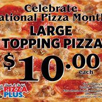 Pizza Plus Inc