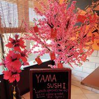 Yamachen's sushi