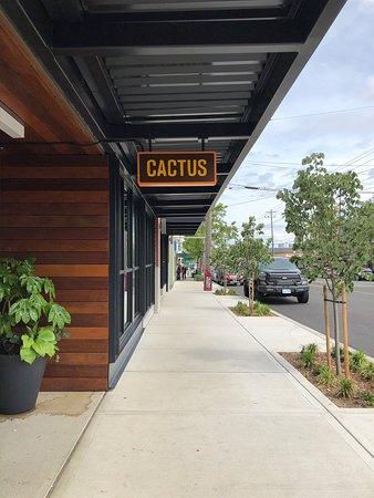 Cactus Restaurant Proctor