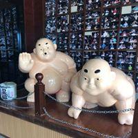 Kyoto Japanese Steakhouse